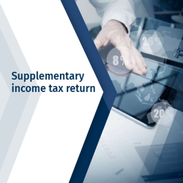 Supplementary income tax return